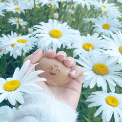 Lâchez prise ! 🌼 C'est les vacances… ~ #boisdecade #marguerite #fleurs #flowers #zen #antistress #detente #ete #summer #morning #genevrier #galet #smile #happy #zerodechet #artisanat #faitmain #cade #artisan #zerowaste #environment #naturel #stress #remede #nature #yoga #meditation #ambiancecade #holidays #mood